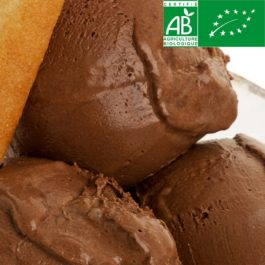 Glace Artisanale Chocolat Noir BIO