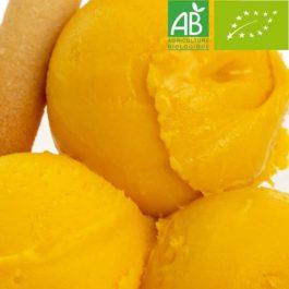 Sorbet Artisanal Mangue Alfonso BIO